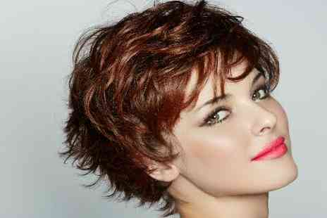 House of Hair and Beauty - Cut & Colour Package for one - Save 52%
