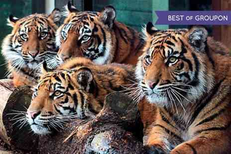 ZSL London Zoo - Entry to  ZSL London Zoo Sunset Safari  For One Child - Save 23%