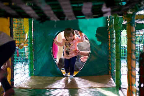 Monkey Maze - Five indoor play passes  - Save 60%