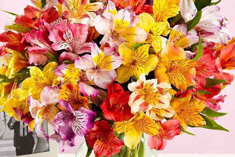 Flowersdelivery4u - Mixed Alstroemeria Bouquet - Save 50%