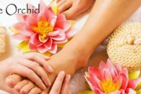 The Orchid - Three Reflexology or Reiki Treatments - Save 61%