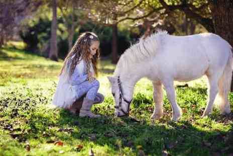Fordbank Livery and Equi Centre - Pony party for up to Eight children - Save 0%