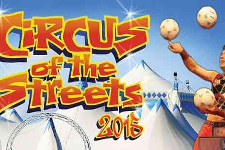 The Netherlands National Circus - One front-circle seated ticket to Circus of The Streets  - Save 50%