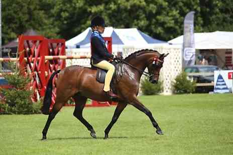 Hickstead - Members Ticket to Hickstead Horse Show - Save 55%