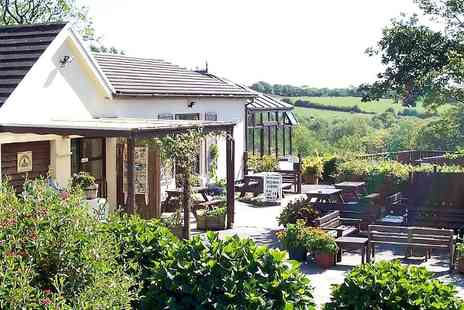 Cwm Deri Vineyard - Wine Tasting For Two - Save 51%