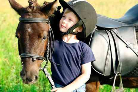 Upper Hattons Stables - Pony Care and Riding Experience - Save 68%