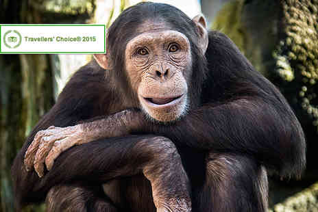Colchester Zoo - Childs entry ticket to Colchester Zoo - Save 17%