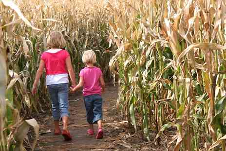 The Braydon Maize maze - Entry to Braydon Maize Maze  For Two - Save 50%