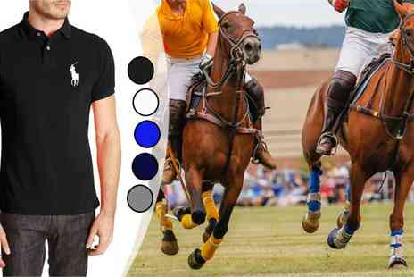 Intriangle Solutions - Ralph Lauren Big Pony Polo Shirts - Save 64%