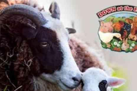 Down at the Farm - Seasonal Pass For Family of Four - Save 67%