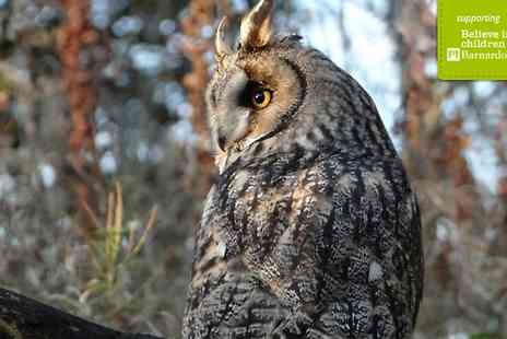 Scottish Owl Centre - Day Pass For Two  - Save 40%