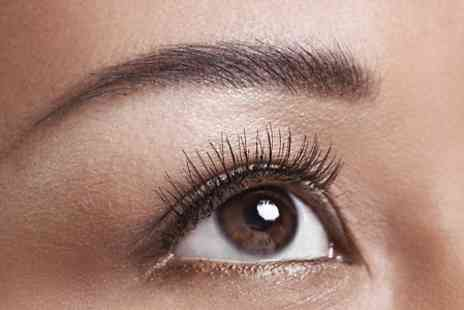 The Beauty Brow Bar - Eyebrow Shape and Tint with Individual Lashes or Facial  - Save 58%