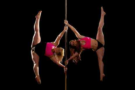Emmas Pole Dancing - Four Sessions of Pole or Aerial Fitness - Save 56%