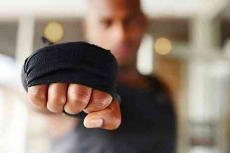 Wutian Martial Art Institute - 90 minute taster session or five class passes - Save 10%