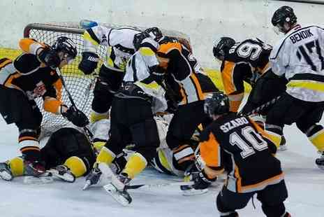Bracknell Bees - Adult or family entry to Bracknell Bees ice hockey games - Save 48%