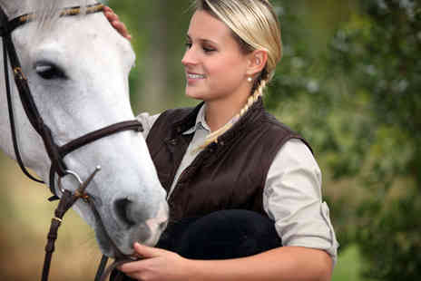 Wythenshawe Park Riding Stables - One hour horse intermediate level riding lesson or trek  - Save 37%