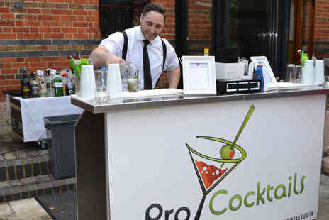 ProCocktails - Two hour professional cocktail bartender hire on Monday to Thursday   - Save 40%