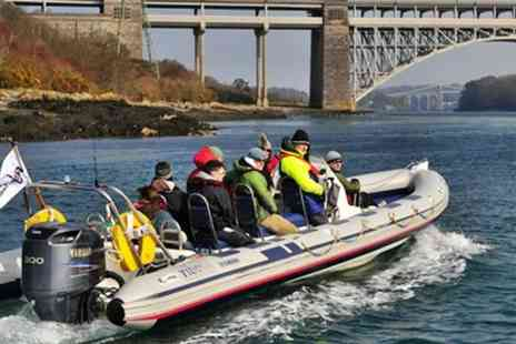 Anglesey Boat Trips - Seal Watching Tour   - Save 53%