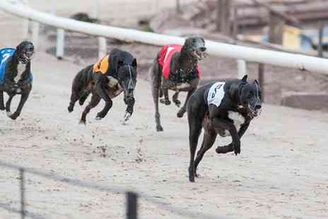 Coventry Independent Greyhounds - Admission for one to Coventry Independent Greyhounds12 September  - Save 52%