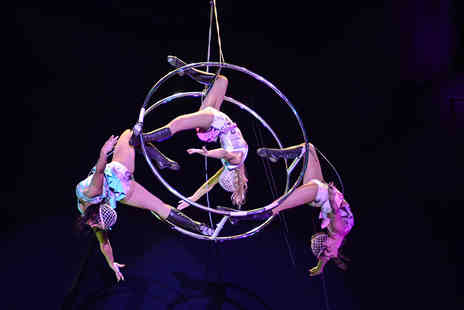 Moscow State Circus - Grandstand ticket to the Moscow State Circus  - Save 53%