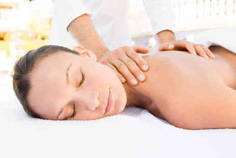 ALS Therapies - Hour Long, Full Body Aromatherapy, Holistic, Stone Therapy, or Swedish Massage - Save 69%
