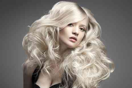 Scrimshaws - Full Head Tint or T Bar Highlights With Cut, Blow Dry and Conditioning   - Save 71%