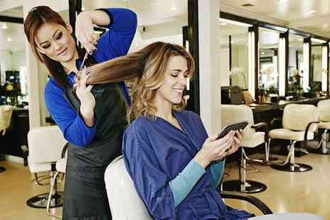 Selena Beauty Salon - Cut and Restyle, Ombre or Balayage with Conditioning Treatment and Hand Massage - Save 50%