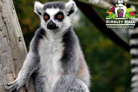 Kirkley Hall Zoological Gardens - Lemur Experience and Entry to Kirkley Hall Zoological Gardens for One  - Save 40%