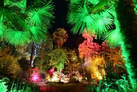 Abbotsbury Subtropical Gardens - Entry for Two Adults or a Family to Enchanted Illuminations - Save 50%