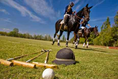 Blueys Farm Riding Centre - One Hour Polo Lesson for One or a Two Hour Polo Experience  - Save 44%