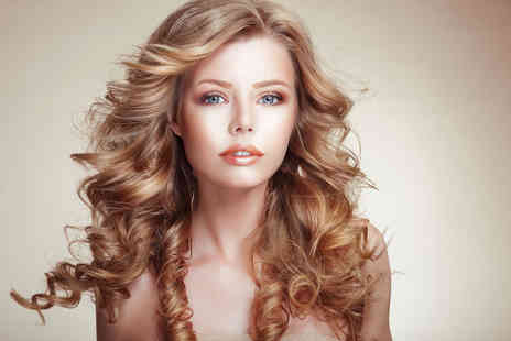 The Ladies Room - Half head of highlights or full head of colour  cut and blow dry - Save 72%