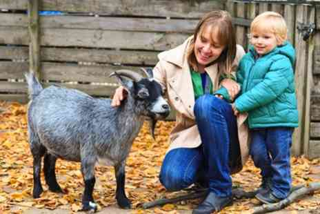 Melsop Farm Park - Melsop Farm Park Day Pass With a Bag of Feed for One - Save 50%