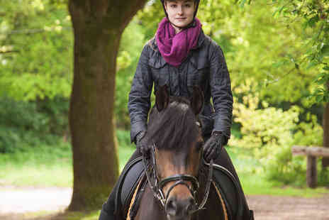 Sweetlands Riding School - Horse Riding Hack with Country Pub Visit For two - Save 0%