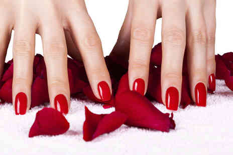 Lime Beauty & Holistics - Shellac manicure or pedicure - Save 64%