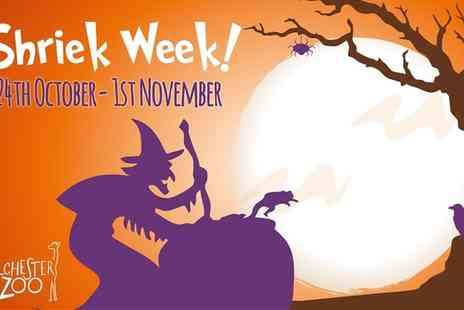 Colchester Zoo - Adult or child ticket to Colchester Zoo Fright Night - Save 15%