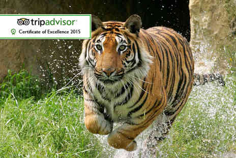 Paradise Wildlife Park - Ticket  to Paradise Wildlife Park  - Save 21%