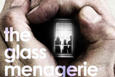 Ingresso - The Glass Menagerie Tickets - Save 39%