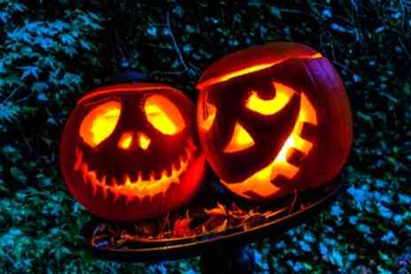 Whilton Locks Garden village - Childrens Ghost Hunt with Meal and Goody Bag for One - Save 0%