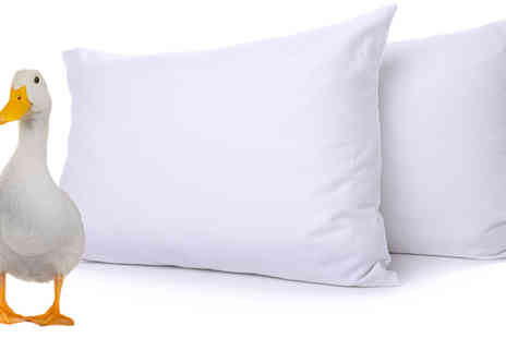 ADAM LINENS - Duck Feather and Down Pillows - Save 57%