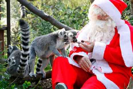 Bristol Zoo Enterprises - Ticket to Enchanted Christmas Evenings with Re Entry in 2016 - Save 0%