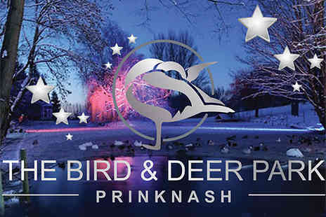 Prinknash Bird & Deer Park - Entry To Winter Wonderland At Prinknash Bird & Deer Park - Save 24%