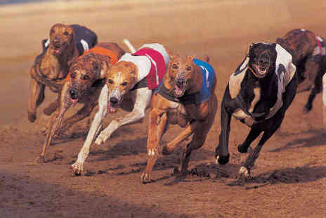 Poole Greyhounds - Entry to Greyhound Racing for Two with Racecard, Hot Dog and Chips, and Beer or Soft Drink Each - Save 71%