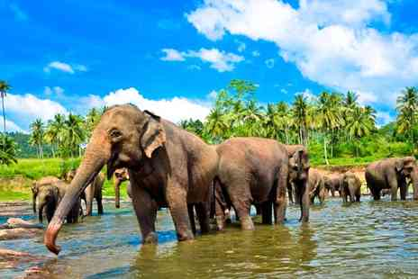 Lumle Holidays - 8 Days Sri Lanka Highlights or 12 Days Explore Sri Lanka - Save 40%