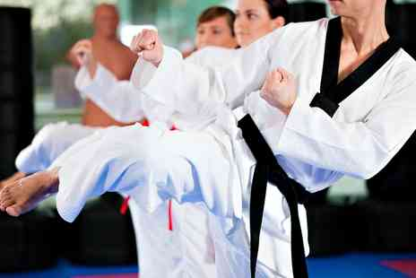 Verve Martial Arts - Two  Taekwondo Classes - Save 58%