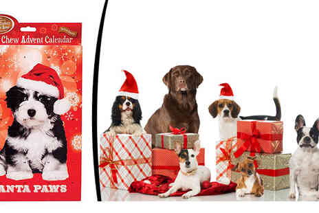 CFS Trading - Dogs Advent Calendar - Save 60%