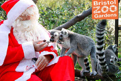 Bristol Zoo - Enchanted Christmas Evening - Save 0%