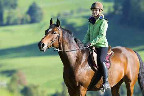 Lower Ford Equestrian - One Hour Horse Riding Experience With Optional Pony Care  - Save 0%