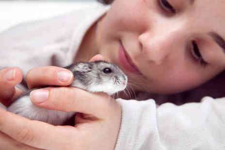 Animal Rangers - Small animal and reptile handling experience for an adult and child  - Save 60%