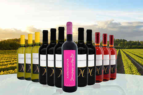 Premium Rioja -  12 bottle hamper of Spanish wines - Save 72%