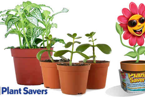 ALTs Custom Goods - Pack of Two Plant Savers - Save 67%